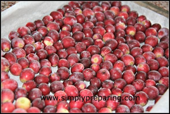 gleaned fruit
