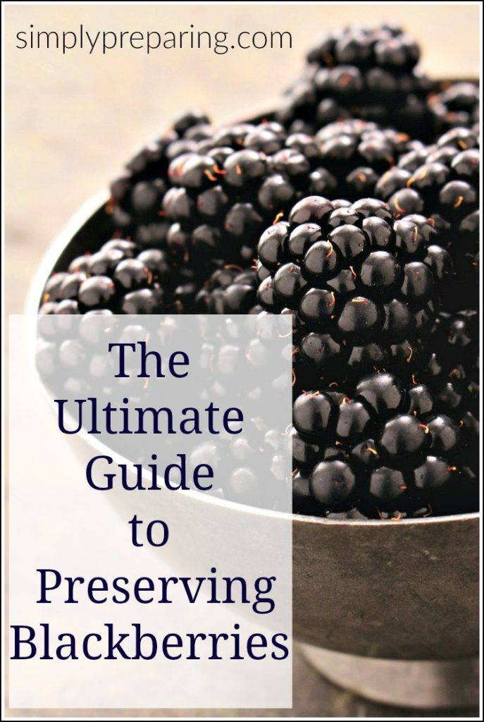 There are more was to preserve blackberries than just making jam and fruit roll ups. Learn how to preserve blackberries to use in smoothies, oatmeal, muffins and more. Learn how to make seedless blackberry powder to stir into yogurt and use in baking. Preserve the fresh taste of summer all year long!