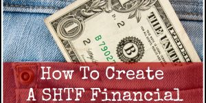How To Make A SHTF Financial Survival Plan
