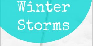 Surviving Winter Storms: A How To Guide
