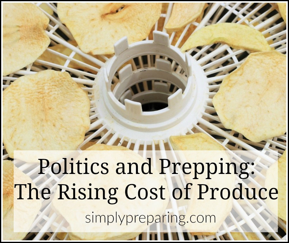 Understanding the relationship between politics and the economy will give you the opportunity to prepare for rising costs. As President Trump moves forward with building a wall between the U.S. and Mexico, rising produce costs are becoming a reality. Make sure your food storage and budget doesn't take a hit with these strategies for prepping against the rising cost of your favorite fruits and vegetables.