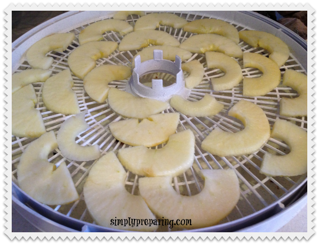 nesco tray with dehdrated apples