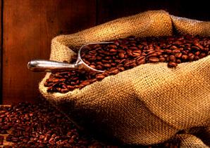 Coffee Beans Brown & Jenkins