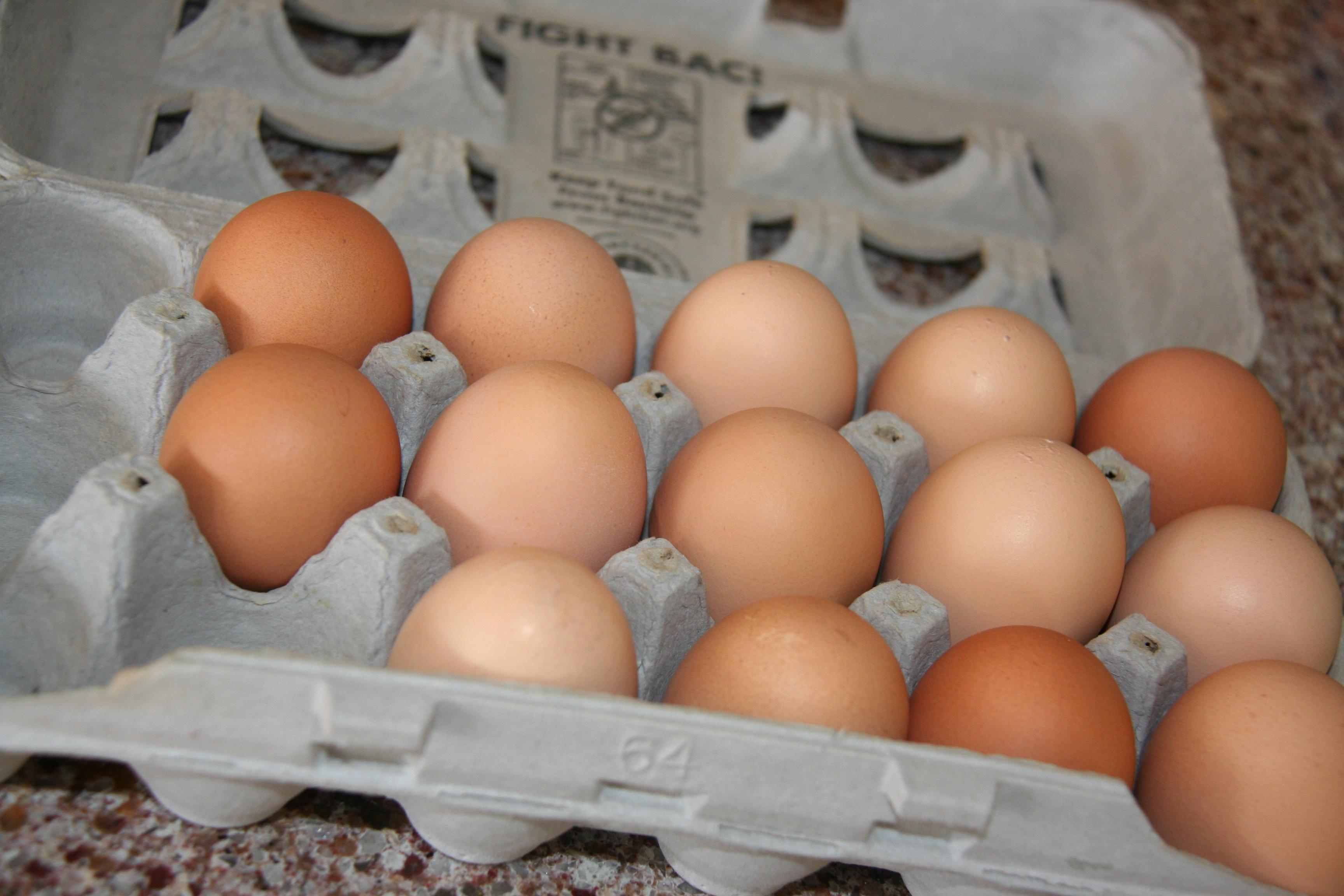 Fresh eggs from backyard chickens - Simply Preparing