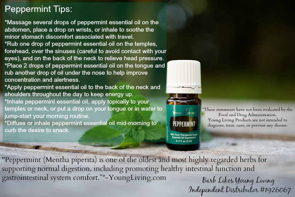 Oils for Prepping: Peppermint Essential OIls