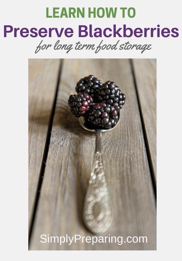How To Preserve Blackberries For Long Term Food Storage