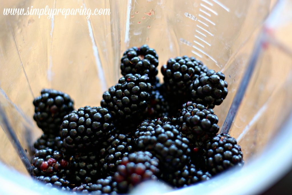 simple-ways-to-preserve-blackberries
