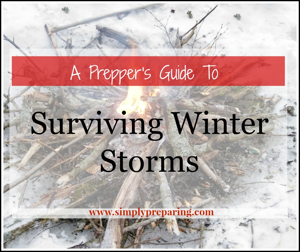 A Guide To Surviving Winter Storms
