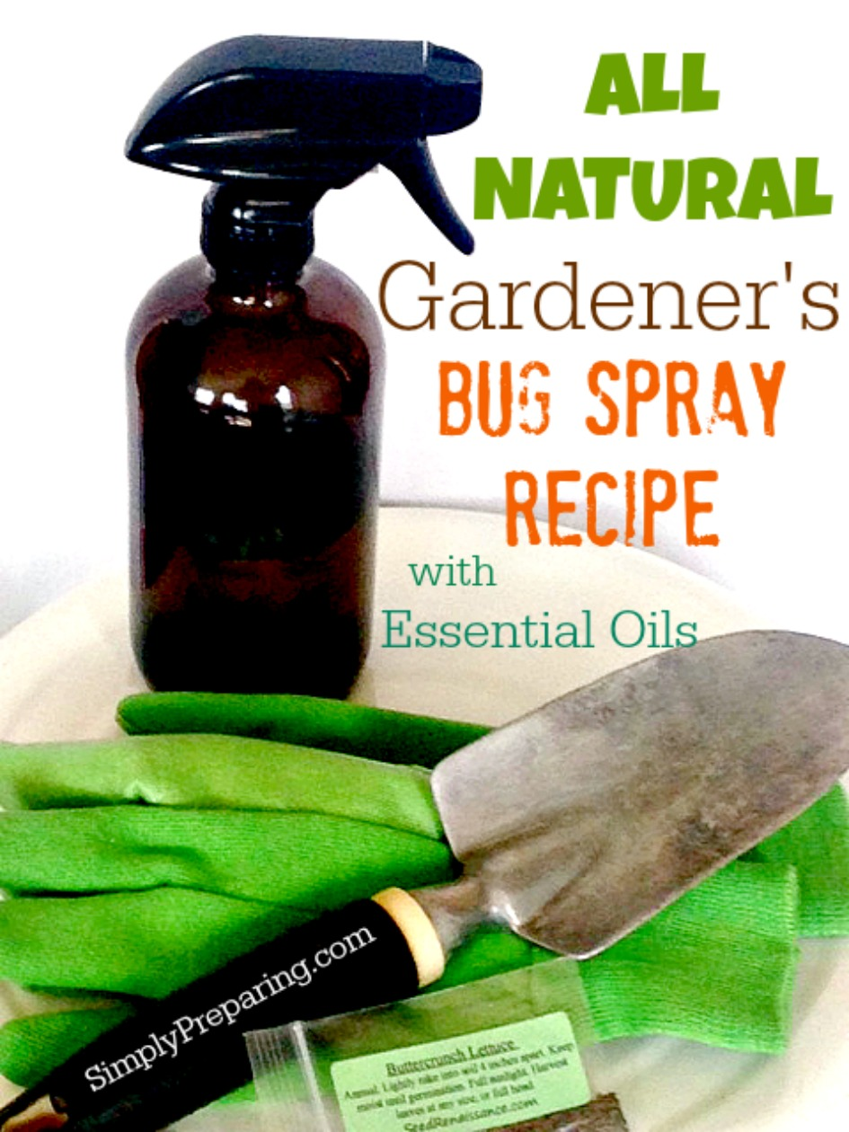 How To Make Natural Bug Spray For Plants