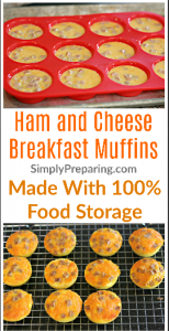 Ham and Cheese Egg Muffin Recipe