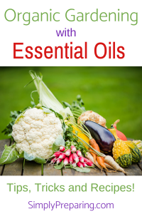 Organic Gardening With Essential Oils